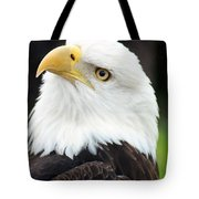 Bald Eagle - Power And Poise 01 Tote Bag