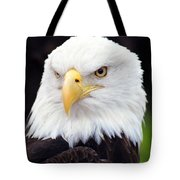 Bald Eagle - Power And Poise 02 Tote Bag
