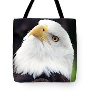Bald Eagle - Power And Poise 03 Tote Bag