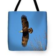 Bald Eagle Soaring Over Trees Tote Bag
