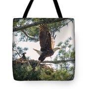 Bald Eagle With Eaglet Tote Bag