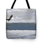 Bald Eagle With Fish 3655 Tote Bag
