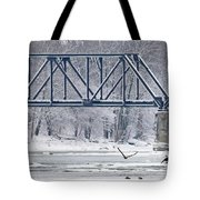 Bald Eagle With Fish By Railroad Bridge 6639 Tote Bag