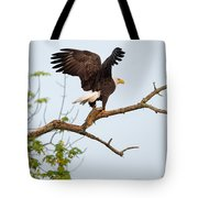 Bald Eagle With Fish Tote Bag