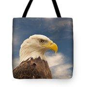 Bald Eagle With Piercing Eyes 1 Tote Bag