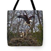 Bald Eagles At Nest Tote Bag