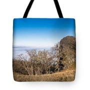 Bald Hills Vista Panorama Tote Bag