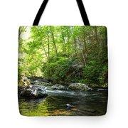 Bald River Tote Bag