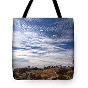 Bald Rock Glacial Erratics Tote Bag