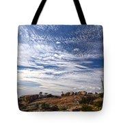 Bald Rock Glacial Erratics Tote Bag
