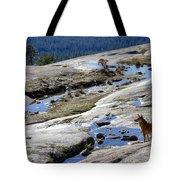 Bald Rock Lookout Tote Bag