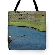 Baldy And Bull Tote Bag
