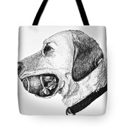 Ball Collector Tote Bag by Susan Herber
