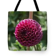 Ball Flower Tote Bag