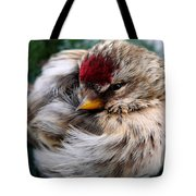 Ball Of Feathers Tote Bag