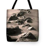 Bally B Desert Tote Bag