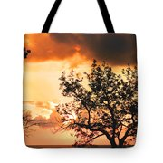 Baltic Sunset In The South Of Sweden Tote Bag