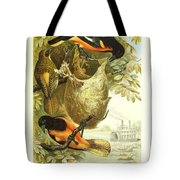 Baltimore Orioles Tote Bag by Philip Ralley