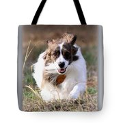 Bama - Pets - Dogs Tote Bag