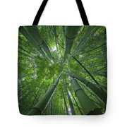 Bamboo Forest 1 Tote Bag