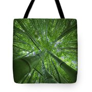Bamboo Forest 2 Tote Bag