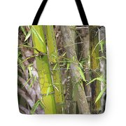 Bamboo I Poster Look Tote Bag