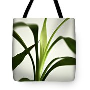 Bamboo Leaves Tote Bag
