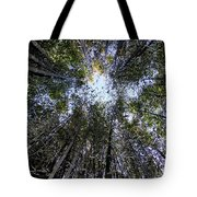 Bamboo Sky Tote Bag