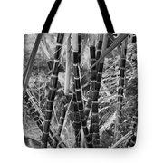 Bamboo-waimea Arboretum  Tote Bag