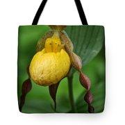 Banana Curls Tote Bag