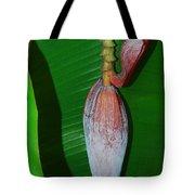Banana Tree Bud Tote Bag
