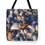 Banded Tulip Tote Bag