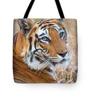 Bandhavgarh Tigeress Tote Bag