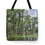 Banks Lake Georgia Tote Bag