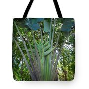 Bannana Palm Tote Bag