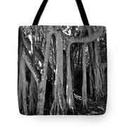 Banyan Trees Tote Bag