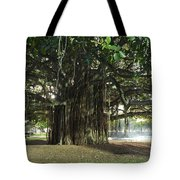 Banyon Glow Tote Bag by Sean Davey