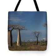 baobab parkway of Madagascar Tote Bag