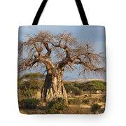 Baobab Tree Ruaha Np Tanzania Tote Bag