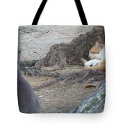Barbados Cat Family Tote Bag