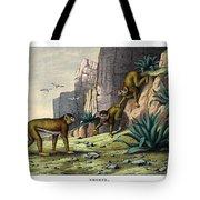 Barbary Ape Tote Bag
