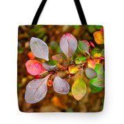 Barberry Tote Bag