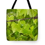 Barbwire And Vine Tote Bag