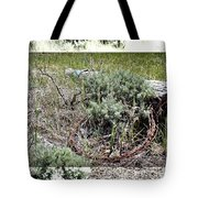 Barbwire Wreath 2 Tote Bag