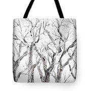 Bare Branches Print Option 2 Tote Bag