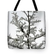Bare Branches With Snow Tote Bag