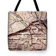 Bare Tree Adobe Wall Tote Bag by Joe Kozlowski