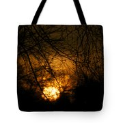 Bare Tree Branches With Winter Sunrise Tote Bag
