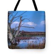 Bare Tree In Marsh Tote Bag