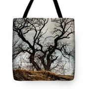 Bare Tree On The Hill Tote Bag